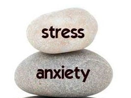 2 rocks with stress and anxiety printed on them